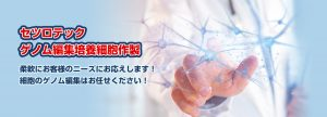 ゲノム編集細胞作製サービス