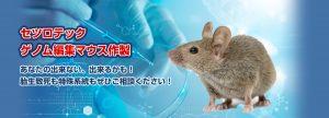 ゲノム編集マウス作製サービス