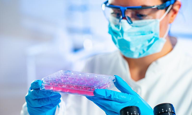 Genome-Edited Cells