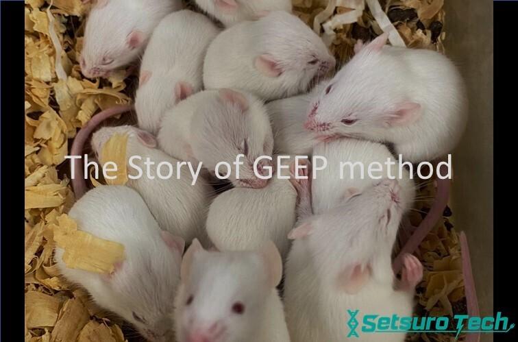 受精卵电穿孔法的发明故事